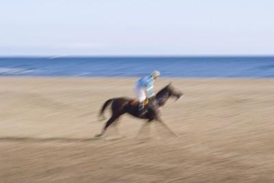 HORSES; RIDER